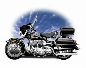 1976 Harley Davidson Electra Glide FLH